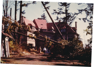 The 1962 Columbus Day Storm toppled giant Douglas Fir trees across the Pittock Mansion estate