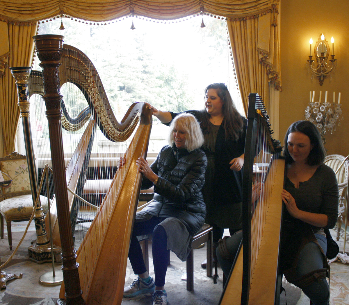 Guests exploring the harp